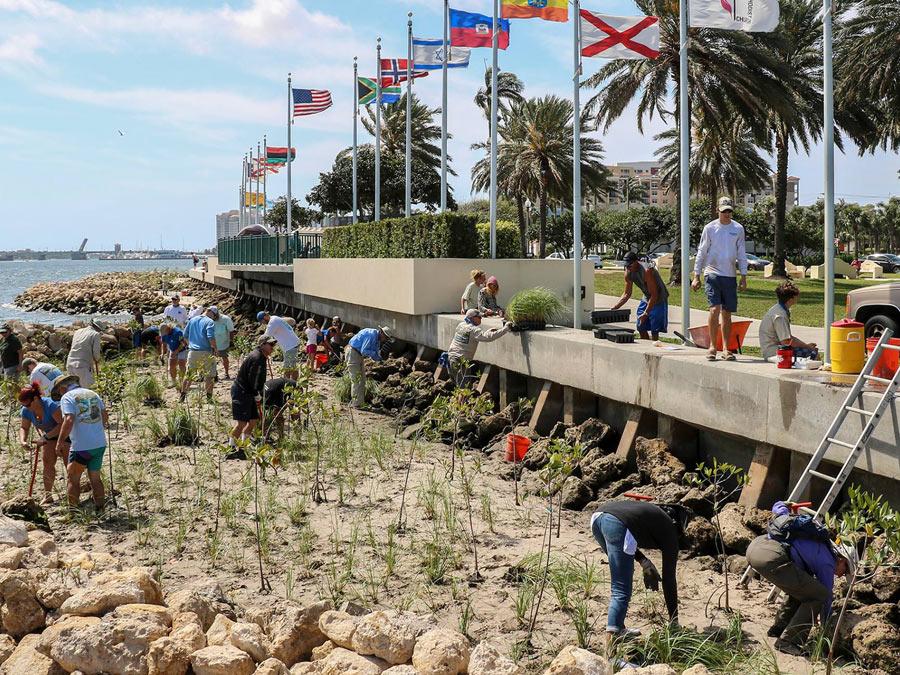 marine habitat restoration