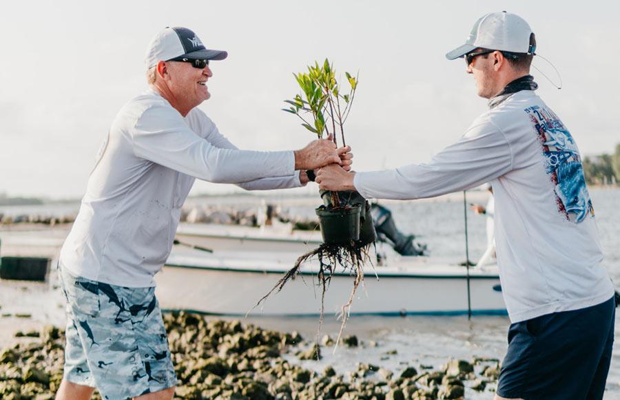 Tom and Buzz planting mangroves at Tarpon Cove